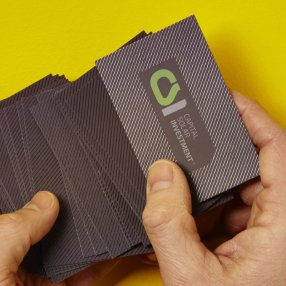 Capital solar investment business cards